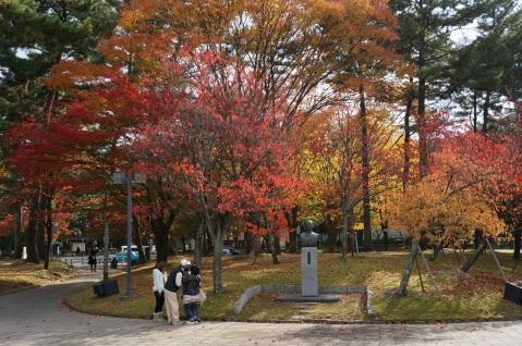 Fall Colors in Nara