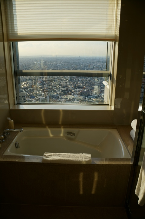 Park Hyatt Tokyo Bathtub View